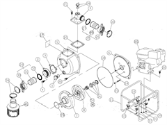 Комплект для помпы мотопомпы Caiman JET80EX (рис.29)