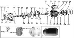 Колодка клемная насоса Энкор Ведуга 5А (БЦС-0,70-32-У3) (рис.1033) - фото 20012